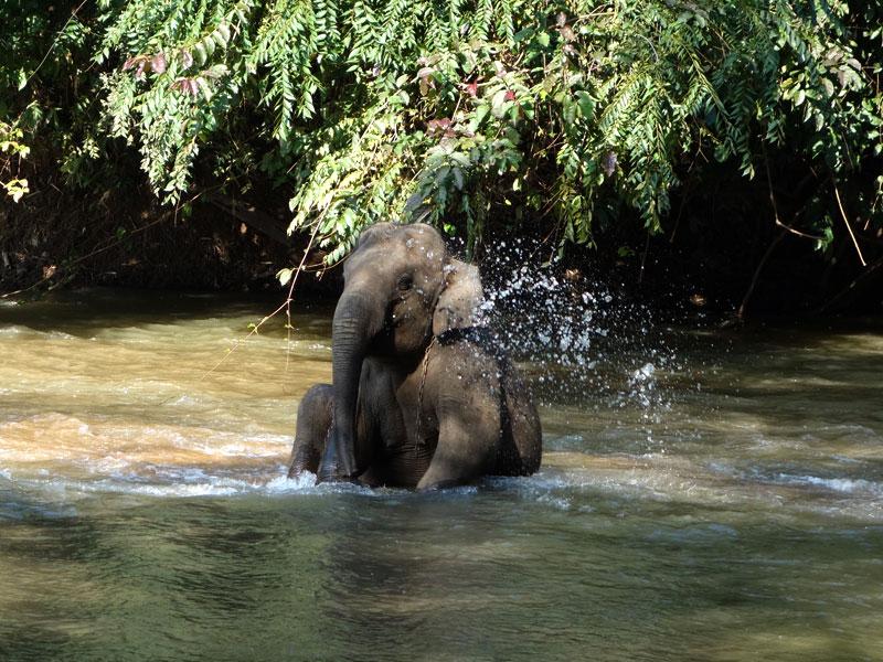 Partir en expédition avec thailandevo.com